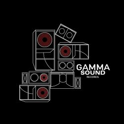 Gamma Sound / N-Tone / Hi-Fif - 80' Madness / E.Q. Teachings - 10""