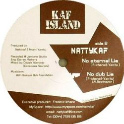 Nattykaf - I blame you/No Eternal Lie - 10""