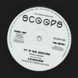 Madu  /  Echo Ranks - Government Man / It A Go Dread - 10""