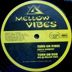 "Amelia Harmony /  Raphaelia - Turn On Vibes / Life So Serious - 12"""