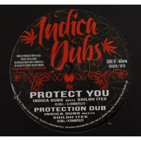 Shelly Ravio/Indica Dubs -  Guide You / Protect you - 10""