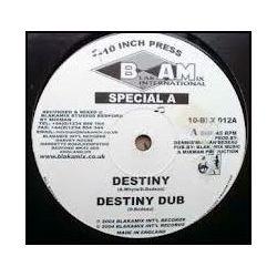 "Special A. /  Mixman - Destiny / Destination Africa - 10"""