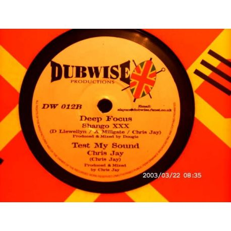 Leroy Gibbons , Shango XXX - Chant Down Babylon (Remix) , Deep Focus - 10""
