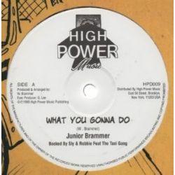 "Junior Brammer - What You Gonna Do - 12"""