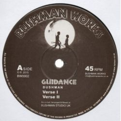 The Bushman - Guidance - 12""