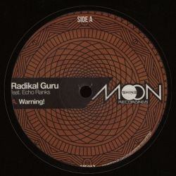 Radikal Guru / Echo Ranks - Warning! - 12""
