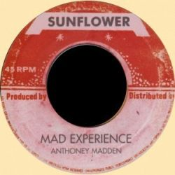 Anthony Madden - Mad Experience - 7""