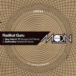 "Radikal Guru - Stay Calm (Mungo's Hi Fi Remix) / Earthwalker (Sekkleman Remix) - 12"""