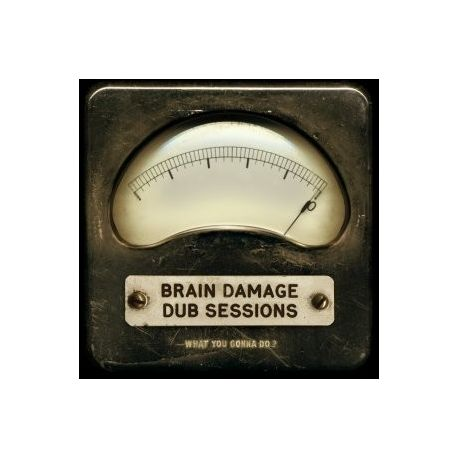 Brain Damage  - What You Gonna Do ? - LP