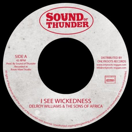 Delroy Williams / Mr Haze & The S.O.A - I See Wickedness - 7""