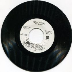 The Shades  - Before The Sun / After The Skank - 7""