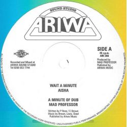 Aisha / Mad Professor - Wait A Minute / Rasta Interpreter  - 12""