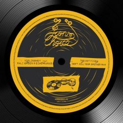 "Violinbwoy / Kali Green / Echo Ranks - Too Hot Fi Dem / Don't Kill Your Brother RMX - 12"" - Lions Den"