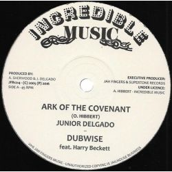 "Junior Delgado - Ark Of The Covenant / Cry Of The Destitute - 12"" - Incredible Music"