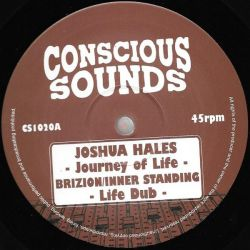 "Joshua Hales - Journey Of Life - 10"" - Conscious Sounds"