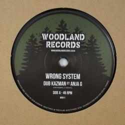 Dub Kazman - Wrong System -...