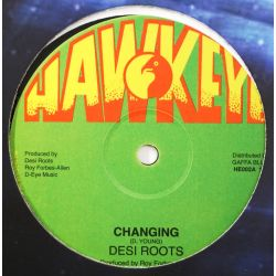 "Desi Roots - Changing - 12""..."