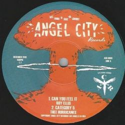 Roy Ellis /  Thee Hurricanes - Can You Feel It - 7""