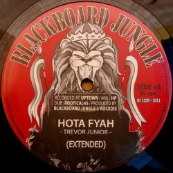 Patrick Andy /  Trevor Junior - Cheer Up / Hota Fyah - 12""