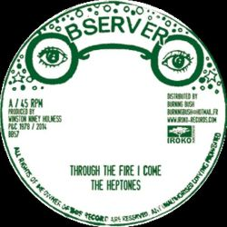 Heptones, The - Through The Fire I Come / Move On - 12""